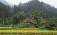 Japan Beauty | Landscape
