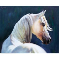 Custom horse painting, Oil Portrait,custom portrait,portrait from... ($100) ❤ liked on Polyvore featuring home, home decor and wall art