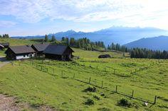Lackenalmen - wunderschöner Almboden am Fuße des Lackenkogels #visitflachau #wandern #almsommer #feelaustria