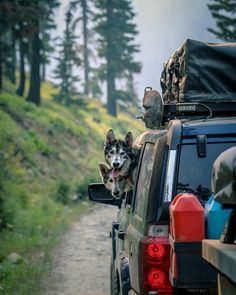 """6,068 Likes, 64 Comments - Overland Bound (@overlandbound) on Instagram: """"Caption this. 🐶😜 #adventureisnecessary #wolfpack 📷💥: @overlandbaz #overlandhound"""""""