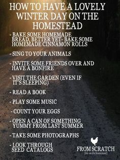 How to have a lovely Winter day on the homestead