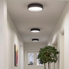 louis poulsen LP Circle Surface Light Sparekassen Vendsyssel