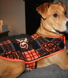 Doggie Fleece Warm Up Jacket & Sewing Projects at Joann.com