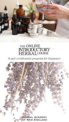 The intention for this self study program is to give those of you with no herbal experience a glimpse into the world of herbs, and to kindle your enthusiasm for a lifelong course of learning.