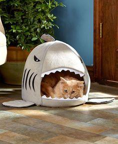 Cute FUNNY SHARK PET BED Dog Puppy Cat Kitten Pup Cozy Soft Plush Pillow Cushion
