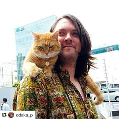 Bob Cat Exploring Tokyo - Sightseeing in Tokyo A Cat Named Bob, Street Cat Bob, Best Friends For Life, Cat Names, All About Cats, Kittens, Kitty Cats, Bob Cat, Funny Cats