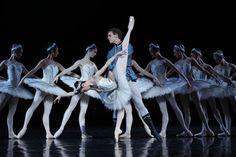 Amber Scott and Adam Bull Swan Lake Australian Ballet