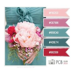 Color Crush Palette 1.27.2013 ❤ liked on Polyvore