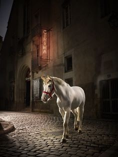 Fine Art Photography by Oliver Metzger