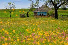Rural scene in Romania