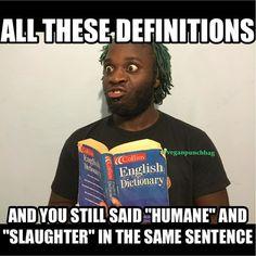 Vegan Facts, Vegan Memes, Vegan Quotes, Vegan Humor, Why Vegan, Vegan Vegetarian, Vegan Funny, Reasons To Be Vegan, Environmentalism