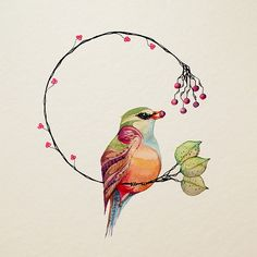 Wild Red Berries by Colleen Parker, Watercolor Bird Illustration, Illustrations, Watercolor And Ink, Watercolor Paintings, Watercolours, Little Birds, Red Berries, Fabric Painting, Bird Art