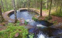 Norveç... Ormanın içinde doğal bir havuz  #norway #norveç #naturel #swimmingpool #orman #yüzmehavuzu