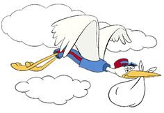 Mr. Stork