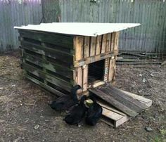 Totally gonna use this idea for our winter duck house for How to build a duck shelter