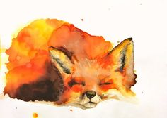 decorate shop Prints and originals directly from the Artist! This is my very own Sleeping fox aquarelle painting. The ORIGINAL painting is but you can order FINE ART PRINTS of ot Image Clipart, Art Clipart, Fox Painting, Painting & Drawing, Fox Drawing, Stamp Drawing, Painting Prints, Animal Paintings, Animal Drawings