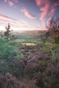 Nidderdale - view towards Pateley Bridge and Gouthwaite Reservoir in  Yorkshire Dales - North Yorkshire, England