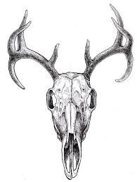 deer skull with flowers tattoo - Hledat Googlem