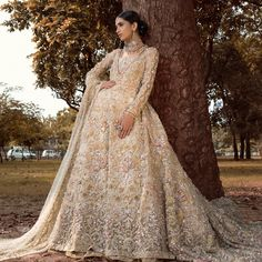 Pakistani gowns Party Wear Dresses, Wedding Party Dresses, Net Dresses, Wedding Wear, Pakistani Wedding Dresses, Pakistani Outfits, Asian Wedding Dress, Bridal Outfits, Eid