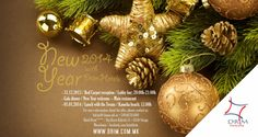 New Year 2014 at Drim Hotels (Hotel Drim & Hotel Beograd - Struga).  - 31.12.2013 / Red Carpet reception / Lobby bar; 20:00h-21:00h - Gala dinner / New Year welcome – Main restaurant  - 01.01.2014 / Lunch with the Swans / Kamelia beach; 13.00h   For more information about the offer, please contact us: hdrim@t-home.mk or +38946785800 | Hotel Drim**** / Kej Boris Kidrich 51 / 6330 Struga / Macedonia / facebook.com/hoteldrim
