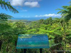 Daintree-Nationalpark Great Barrier Reef, Cairns, Rafting, Safari, Das Hotel, Mountains, Nature, Travel, Alexandra Of Denmark
