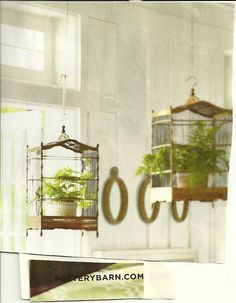 Bird cages for plant holders. Possibly a future upcycle project. These ones are from Pottery Barn.