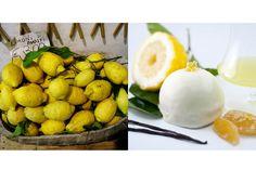レモンの香りに包まれる銘酒と名菓。