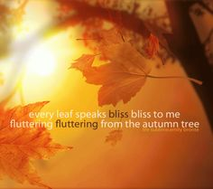 Emily Bronte #fall #autumn #quote