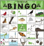 spring walk bingo
