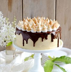 S'mores Chocolate Cake with Caramel Mascarpone Frosting