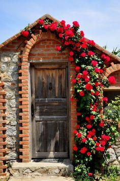 doorways arches roses