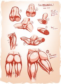 Nsio Body Practice1: Muscles of the Inner-thigh by Nsio