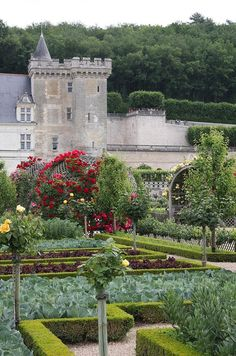 A Potager at Château de Villandry, France Designed to feed both body and soul, the potager or ornamental kitchen garden is the ultimat. Beautiful Castles, Beautiful Gardens, Beautiful Places, Places To Travel, Places To See, Places Around The World, Around The Worlds, Château De Villandry, Photo Chateau