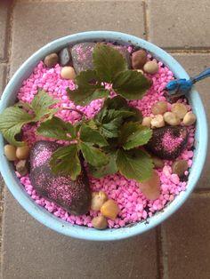 My girl's strawberry fairy pot