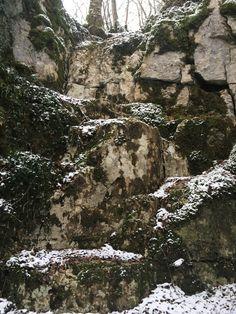 #rocher #foret #nature #chemin de randonnée #randonnée pédestre Nature, Paths, Pathways, Drill Bit, Naturaleza, Nature Illustration, Off Grid, Natural
