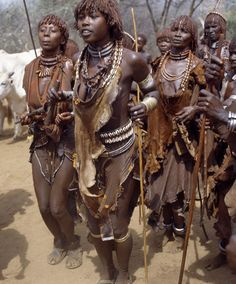 hamar women - fantastic leather and shell coverings