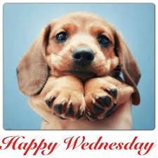 Half way through the working week, have a great #Wednesday