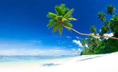 this reminds of the calm and luxurious beaches of Bali. It would be like you had a piece of bali or anywhere luxurious in your presence Strand Wallpaper, Beach Wallpaper, Spring Break Destinations, Spring Break Trips, Exotic Beaches, Florida Beaches, Sandy Beaches, Tropical Beaches, Beautiful Beach Pictures