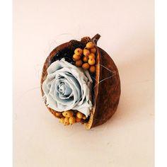 modrá ruža v exoticom orechu 8 x 12 cm