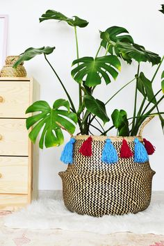 Meanwhile I forgot to share this DIY tassel belly basket with you. After all why keep it simple when you can embellish your basket with tassels! Link to the post will be up in the description box Belly Basket, Diy Tassel, Tassels, Cactus, Diy Home Decor Projects, Home Decor Styles, Bunt, Apartment Ideas, French Apartment