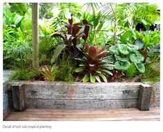 Landscaping Auckland | Landscape Design services | Landscapers | Kirsten Sach Landscape Design offers a complete garden design service, land...