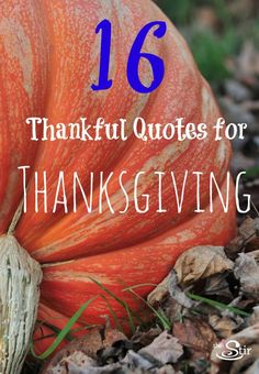 """Don't know what to say at the Thanksgiving table? These quotes will help you craft the perfect """"grace"""" http://thestir.cafemom.com/in_the_news/164469/16_thanksgiving_quotes_about_gratitude?utm_medium=sm&utm_source=pinterest&utm_content=thestir"""