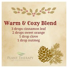 I love this diffuser blend, so comforting.
