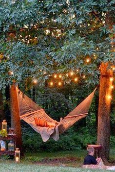 Backyard Hammock And Tree Lights