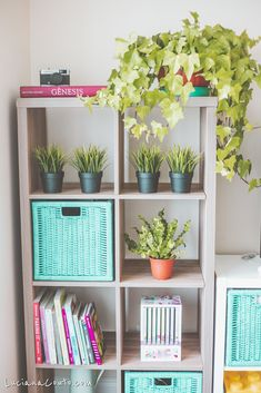 Let me share with you my Living room Decoration Diary for this Spring. Get some ideas on how I used Kallax (from Ikea) and some colors to change my space. My Living Room, Living Room Decor, Easy Care Indoor Plants, Cheap Vinyl, Summer Scent, Inside Home, Selling Furniture, Kallax, My Spring