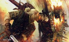 The Witcher 2 Assassins of Kings Wallpapers HD Wallpaper