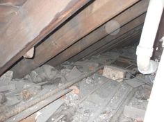 ASL Asbestos, Surveys & Testing  5 Mitchell Street  Edinburgh  0131 664 2107