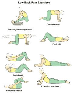 Do you suffer from lower back pain? A lot of other people do too! Try these exercises everyday.