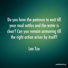"""""""Do you have the patience to wait till your mud settles and the water is clear? Can you remain unmoving till the right action arises by itself?"""" ~ Lao Tzu"""