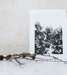 LuciaMphoto15_WinterWhiteness_096